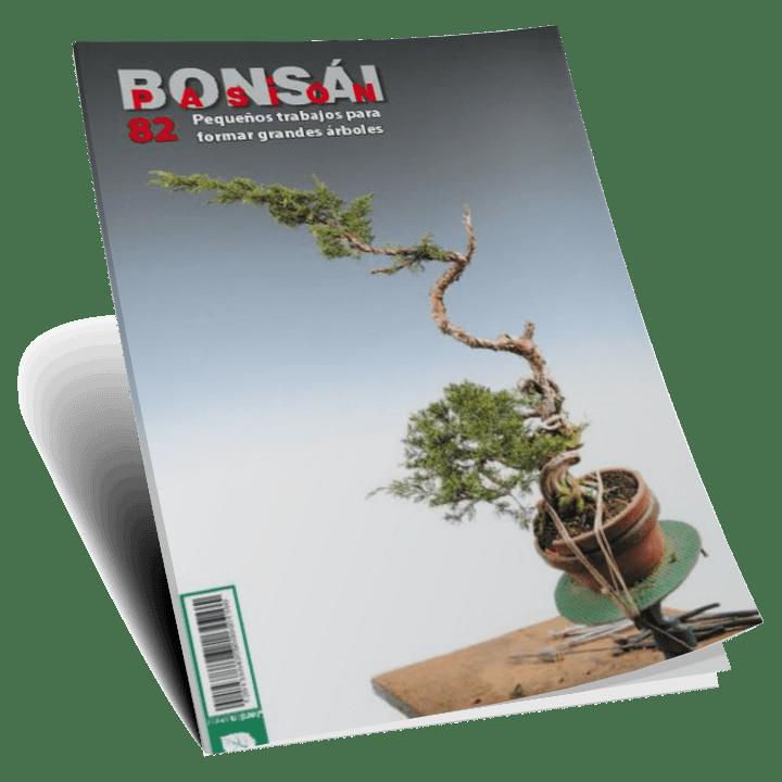 revistas-digitales2