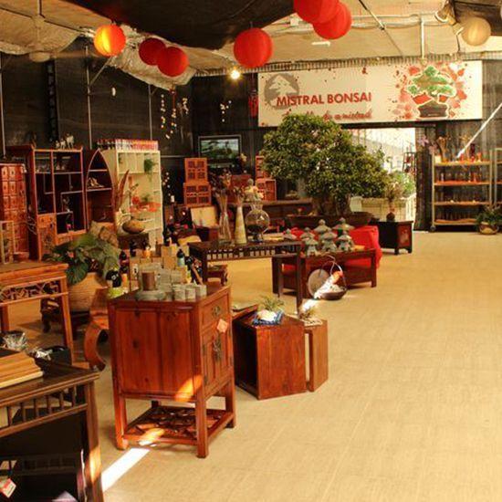galeria mistral bonsai