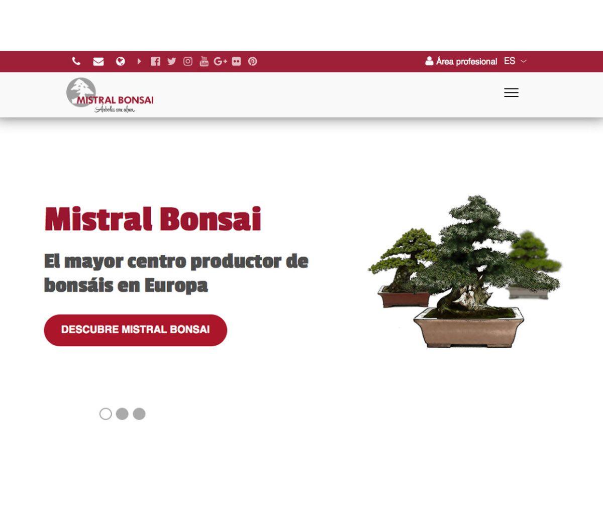 Mistral Bonsai lanza su nueva web responsive