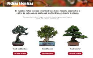 new responsive website 4