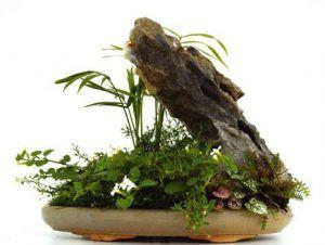 Paisaje oriental Feng-Lui