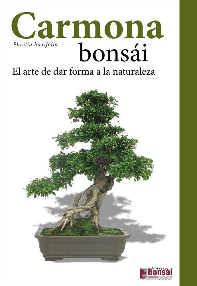 Guia Carmona Bonsai