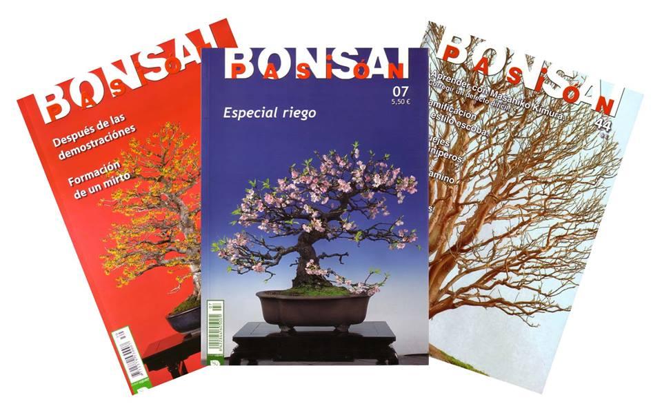 Bonsai Pasión, la revista del mundo del bonsái