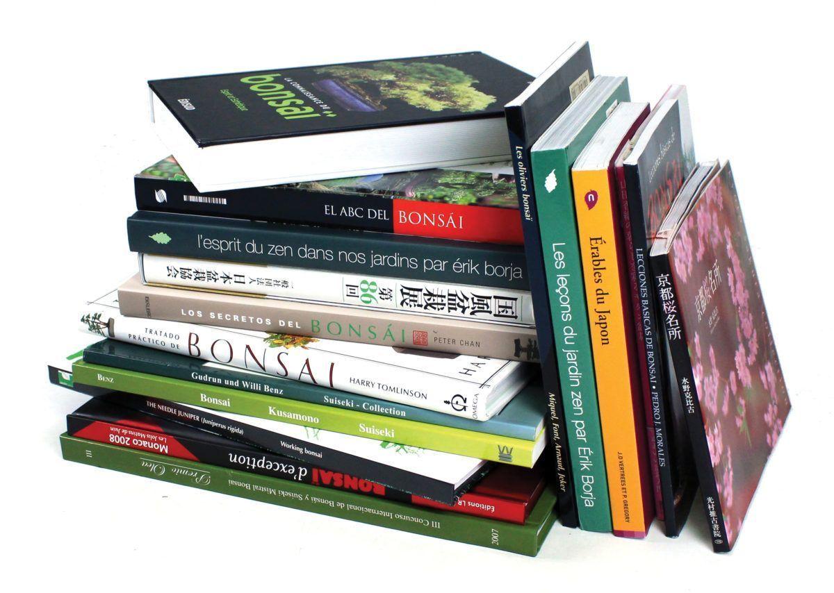 Nouveautés et indispensables du bonsaï : notre sélection littéraire