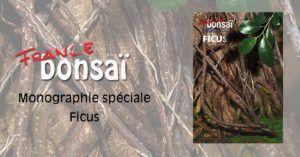 monográfico especial Ficus