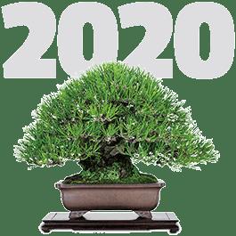 Jornadas del bonsái el 18 y 19 de abril de 2020