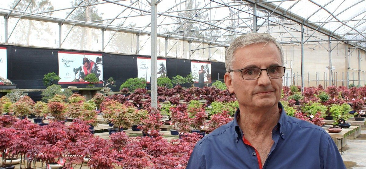 """Spanish bonsai is number one in Europe"""