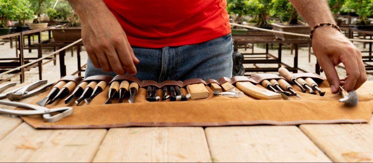 Étui contenant un ensemble d'outils spécifiques pour le travail du bois.