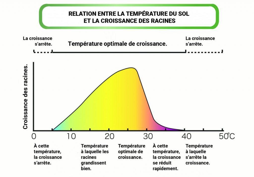 Graphique températures-racines