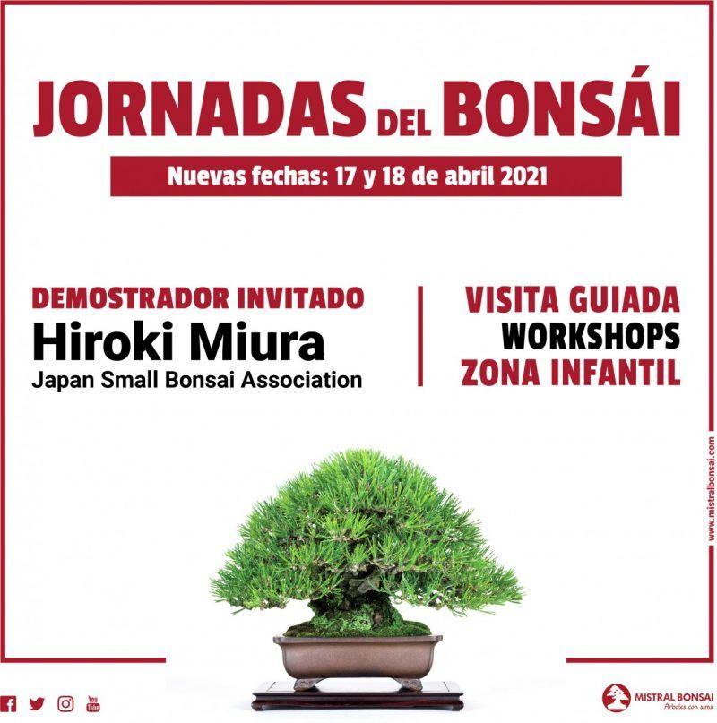 Nuevas fechas para las Jornadas del Bonsái. Aplazada la visita del Maestro Hiroki Miura.