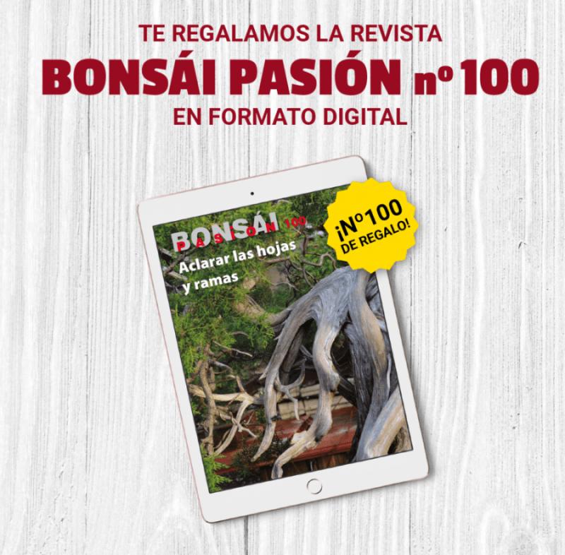 Especial COVID19: ¡Te regalamos la revista Bonsái Pasión nº100!